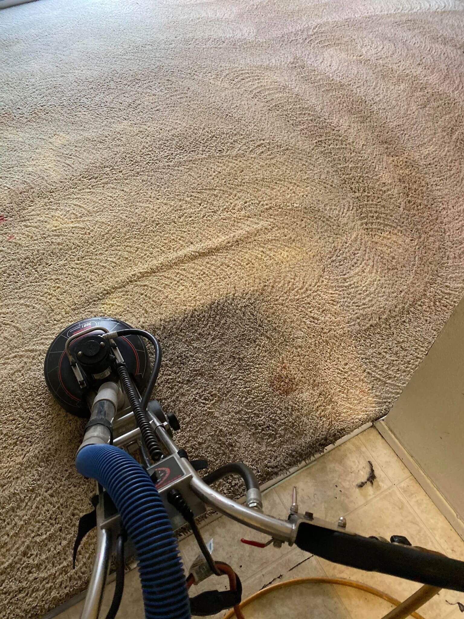 Carpet Cleaners San Diego