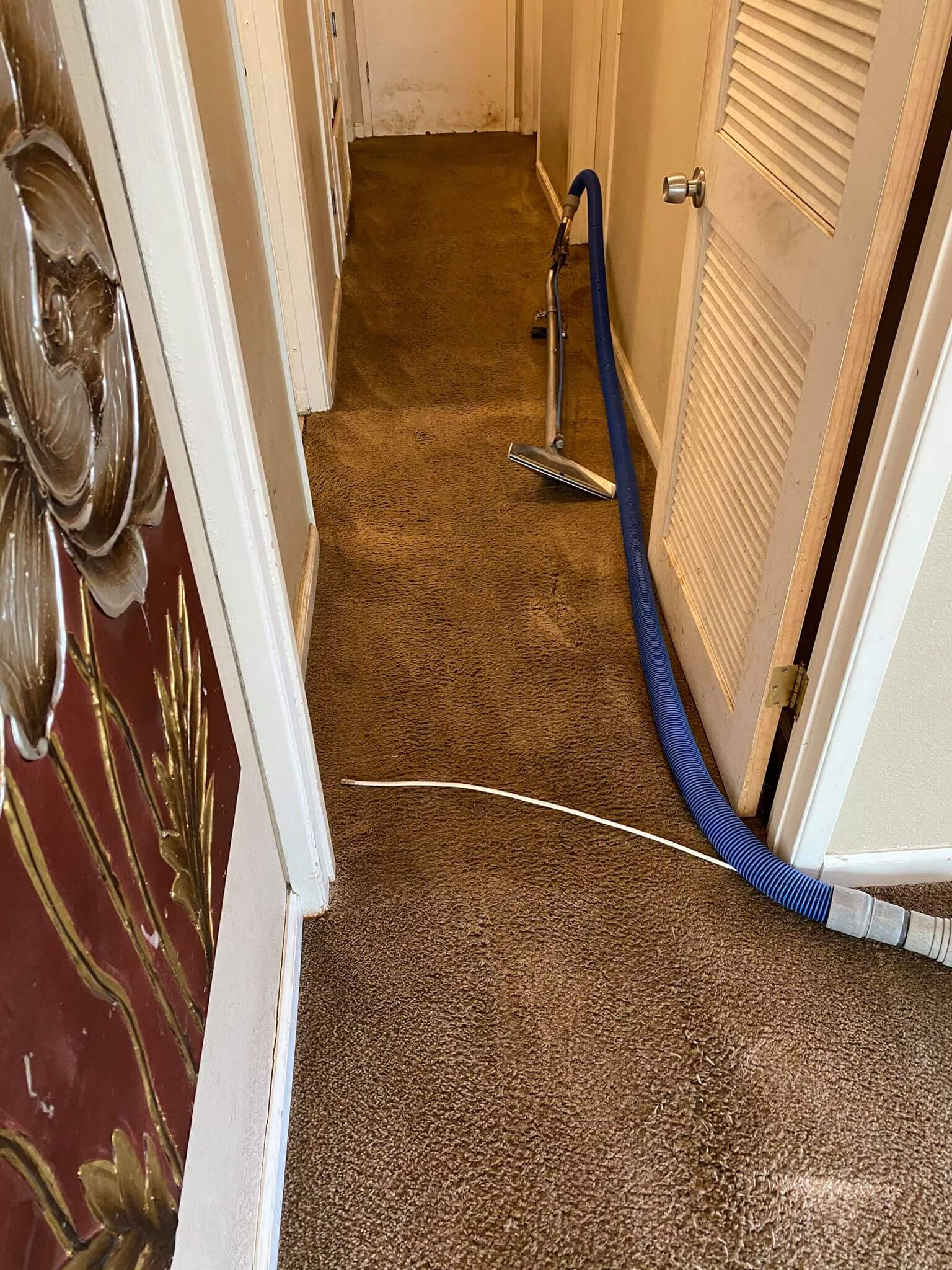 Residential Cleaning San Diego