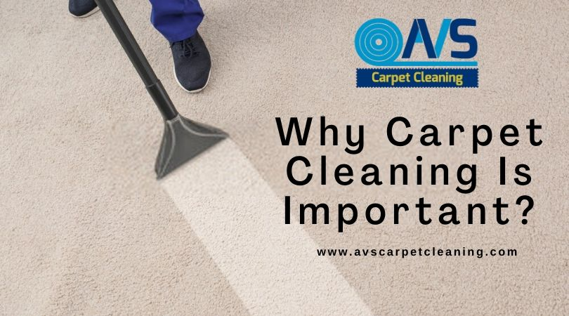 Why Carpet Cleaning Is Important?