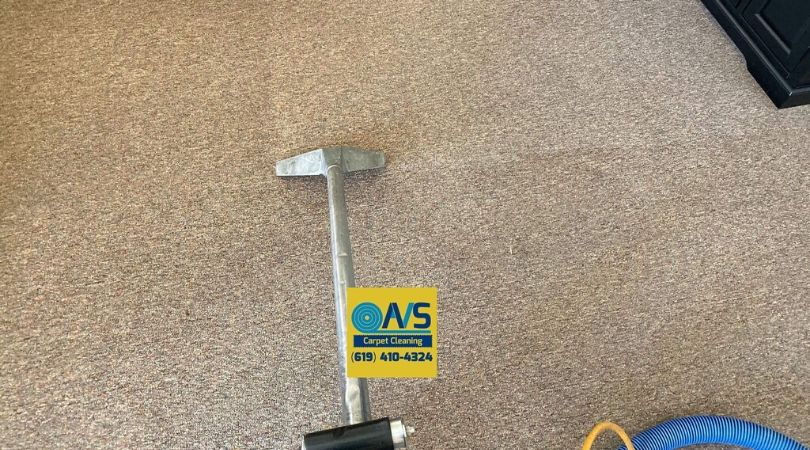 Quality Carpet Cleaning Services