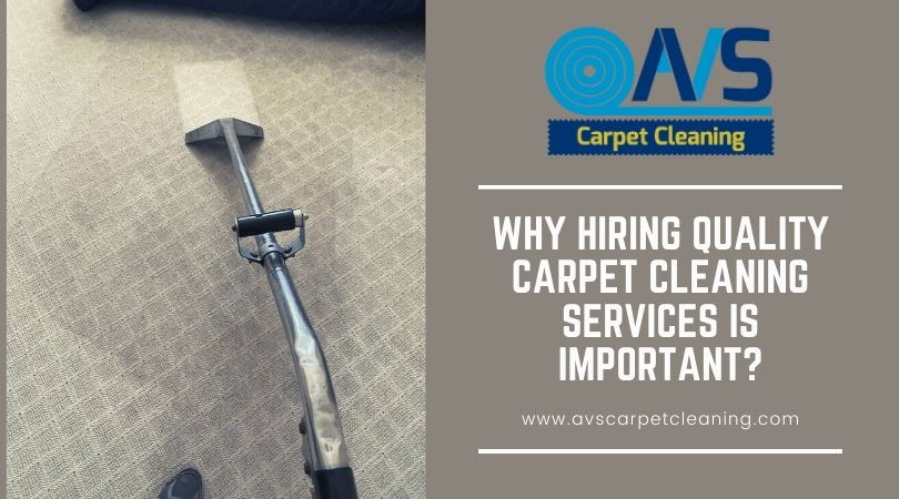 Why Hiring Quality Carpet Cleaning Services Is Important?