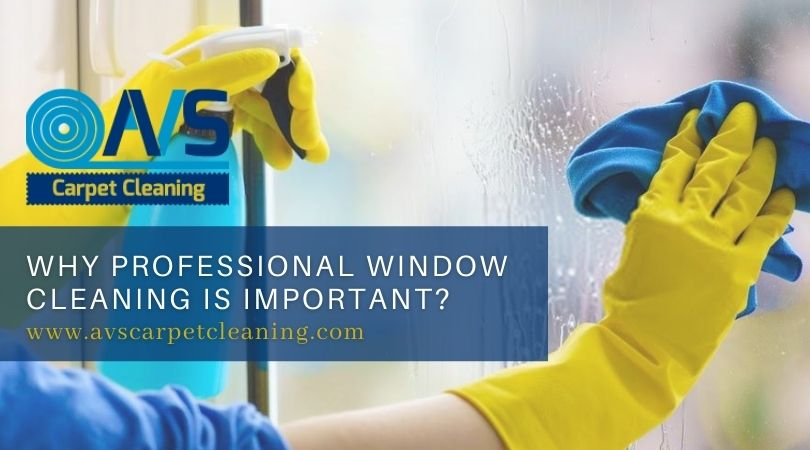 Why Professional Window Cleaning Is Important?