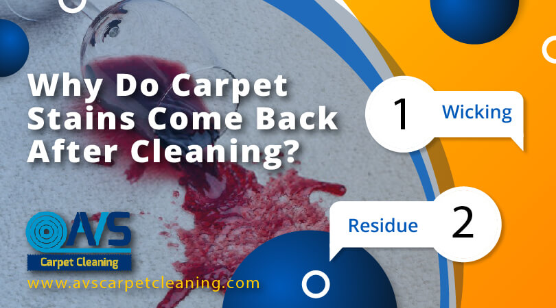 Why Do Carpet Stains Come Back After Cleaning?