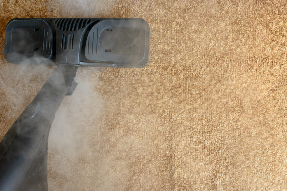 Carpet Cleaning Company in San Diego