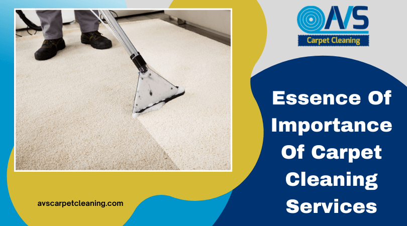 Essence Of Importance Of Carpet Cleaning Services
